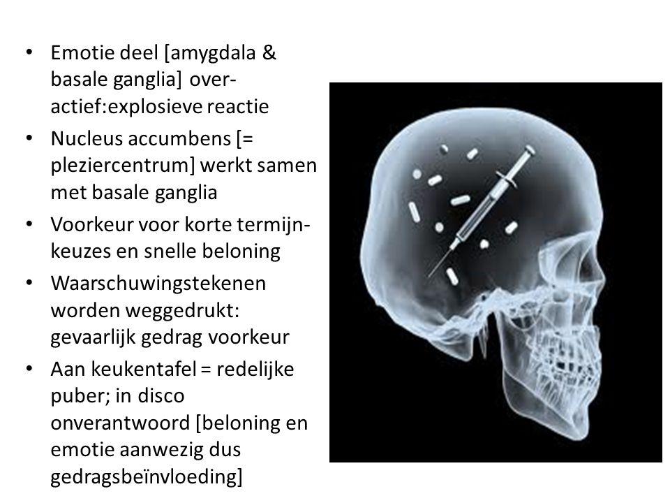 Emotie deel [amygdala & basale ganglia] over-actief:explosieve reactie